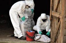 В Копчаке стартовал процесс вывоза более 10 тонн пестицидов