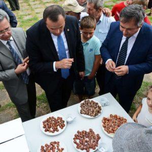 В рамках праздника «День села» 5 ноября будет проведен национальный фестиваль «Баур-2018»
