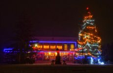В Копчаке зажглись праздничные новогодние огни на самой высокой ёлке Гагаузии