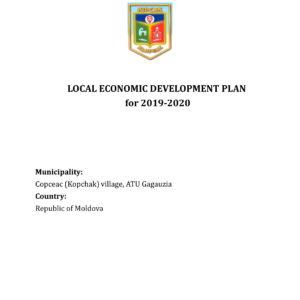 План местного экономического развития 2019-2020