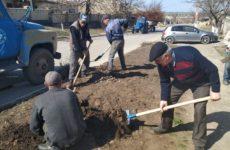 19 марта примэрия c.Копчак приступила к благоустройству улицы Родака