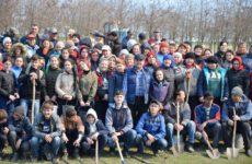 2 апреля — день озеленения с.Копчак