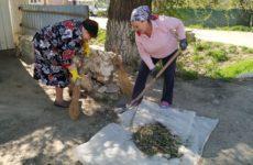 23 апреля коллектив сельской библиотеки провел уборку территории