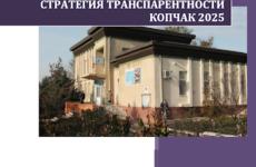 Местный Совет утвердил «Стратегию транспарентности  2025 «(Видео)