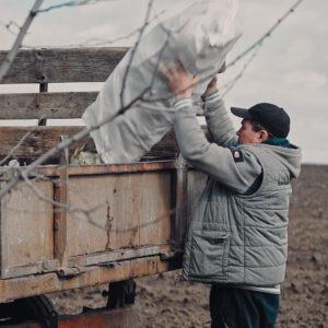 Инициативная группа из с. Копчак  организовала  уборку  рощи