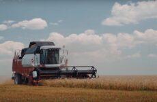 (Video) Жатва 2021. Началась уборка  первой группы зерновых.