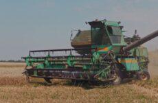 В кооперативе «колхоз Победа» полным ходом идёт уборка урожая